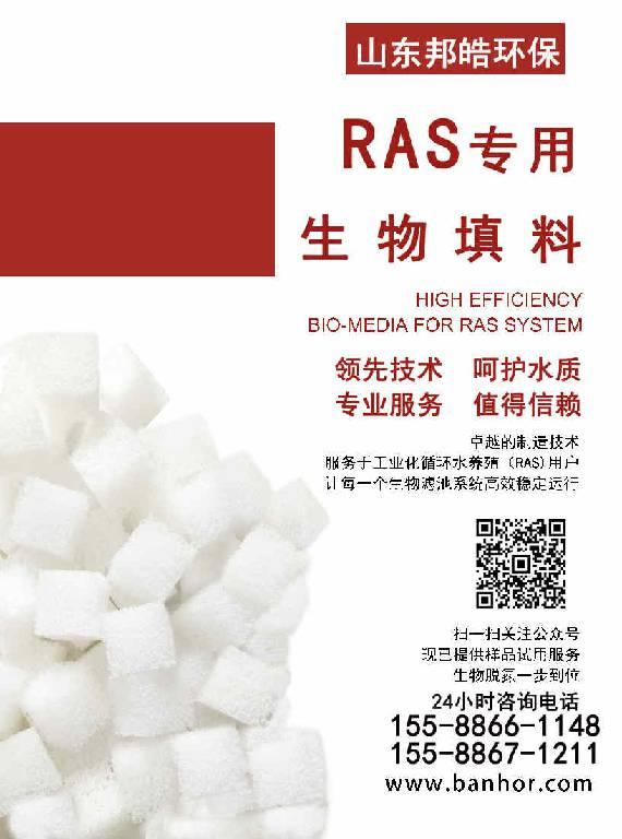 RAS 专用生物填料